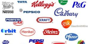 Best FMCG stocks to buy in India in 2013; Best stocks to buy in 2013