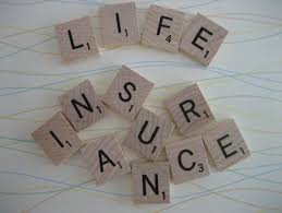 How good is Bharti Axa Life Secure Income Plan