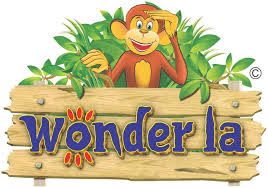 Wonderla Holidays IPO