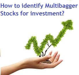 How to identify Multibagger Stocks for investment