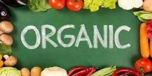 food business ideas - organic farming