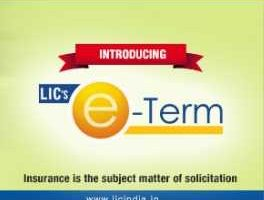 Top 7 Best Term Insurance Plans in India in 2019-2020-life eterm plan