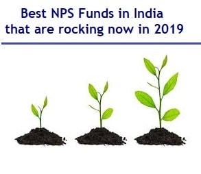 Best NPS Funds in India that are rocking in 2019