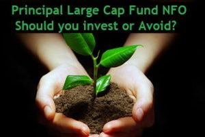 Principal Large Cap Fund NFO Review