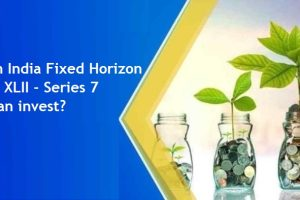 Nippon India Fixed Horizon Fund - XLII - Series 7 – Who can invest