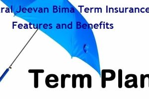 Saral Jeevan Bima Standard Term Insurance Policy – Features and Benefits