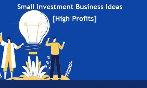 Small Investment Business Ideas [High Profits]
