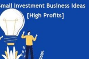 Small-Investment-Business-Ideas-High-Profits