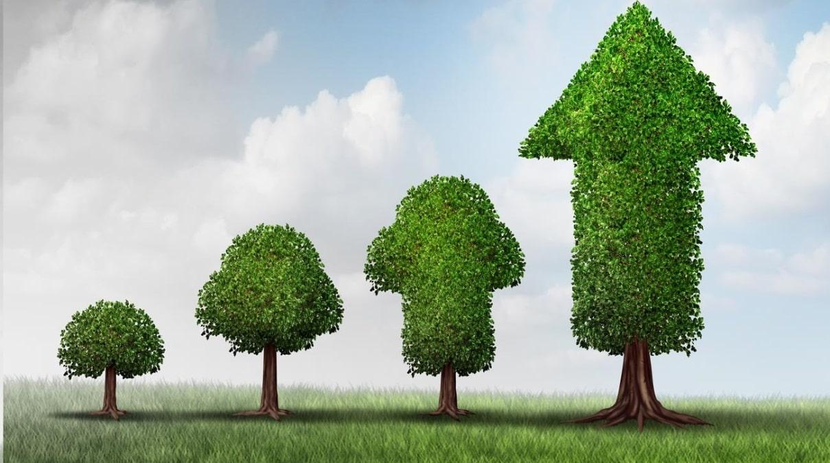 Aditya Birla Sun Life Nifty Smallcap 50 Index Fund NFO - Should you invest