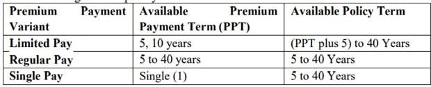 Premium options under Max Life Saral Jeevan Bima - Standard Term Insurance Plan