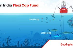 Nippon India Launches Flexi Cap Fund Review